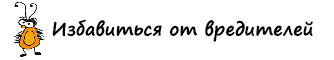 Логотип сайта Борьба с вредителями