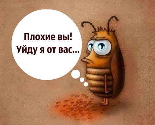 избавиться от тараканов с помощью ловушки