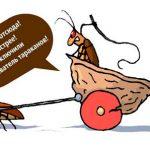 ульразвуковые ловушки от тараканов