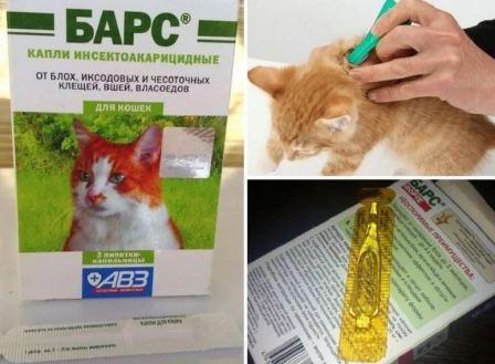 Капли от блох для кошек инструкция