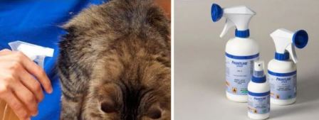 Капли против блох для кошек