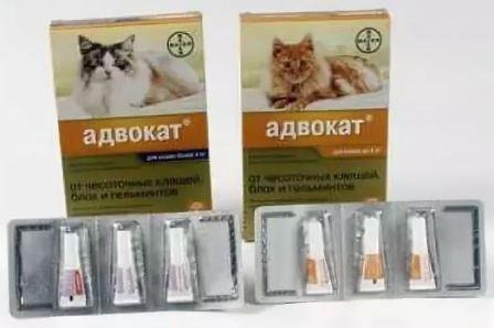 Адвокат капли для кошек