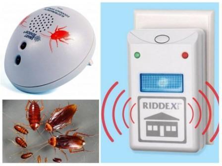 Эффективное средство от тараканов в квартире