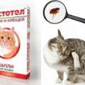 Выбор и применение капель от блох, клещей у кошки